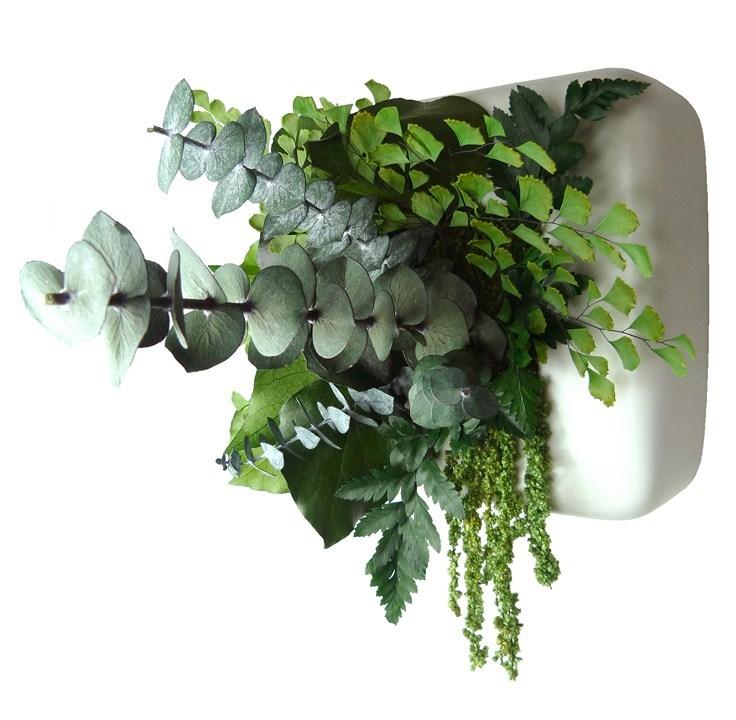 le comparateur de prix de produits cologiques jardin. Black Bedroom Furniture Sets. Home Design Ideas